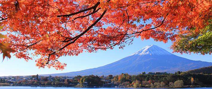 日本商標審查指南的變更